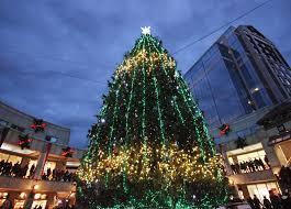 Boston Christmas Lights Tour Christmas 2020 In Boston Boston Christmas Tree