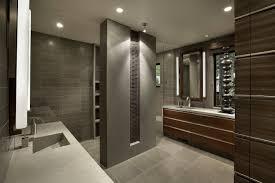 Bathroom Remodeling Ideas  Inspirational Ideas For Bath RemodelsSmall Master Bathroom Renovation