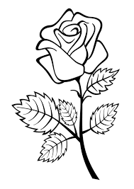 How to draw coloring page of a birthday flowers to color with watercolor crayons for children to learn to color and paint oloring activity for kids children. Coloring Pages Rose Flower Coloring Pages