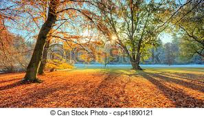 Image result for late autumn photos