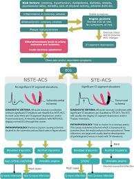 Timi Flow Chart Classification Of Acute Coronary Syndromes Acs Acute