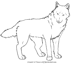 20 Relistic Coloring Pages Artic Wolf Ideas And Designs