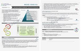 Visual Resumes Graphical Visual Resumes 22