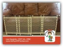Keep Dogs f The Sofa