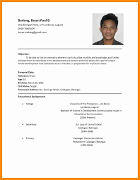 Resume Format Sample For Job Application Job Application Resumes