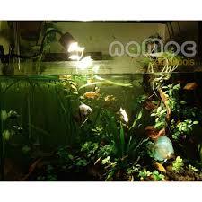 ĐÁNH GIÁ] Đèn Led Siêu Rọi Kẹp Thành Bể 3 Chế Độ Màu Led Rọi Bể Cá Thuỷ  Sinh Biotop, Giá rẻ 200,000đ! Xem đánh giá! - Cửa Hàng Giá Rẻ