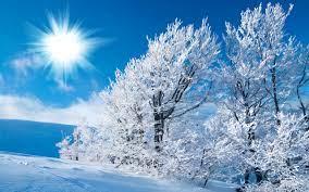 Winter Snow For Desktop wallpaper ...