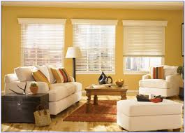 What Is A Good Color For A Living Room Best Color Paint Living Room Feng Shui House Decor