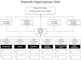 Organizational Chart Nonprofit 2 Resume Layout