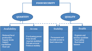 food security a timely political issue