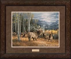 meadow elk