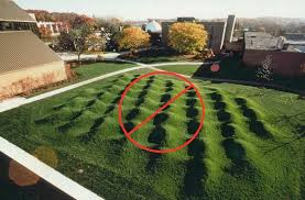 how to level a py lawn diy lawn expert