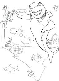 Dolphin Tale Coloring Pages Alex Photo