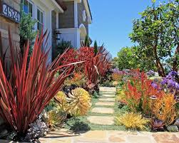 Small Picture Best 25 Xeriscape california ideas on Pinterest Water tolerant