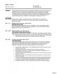 Retail Sales Associate Resume Sample Fresh Objective For Sales