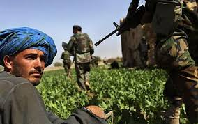 Image result for aFGHAN DRUGS