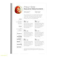 Pages Resume Templates Awesome Apple Pages Resume Templates Free Best Of Resume Template For Mac