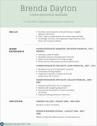 How To Write A Professional Resume Examples Free Download