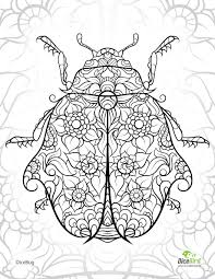 Small Picture DiceBug LadyBug free adult coloring pages to print