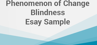 phenomenon of change blindness essay net blog definition of change blindness why we fail to notice