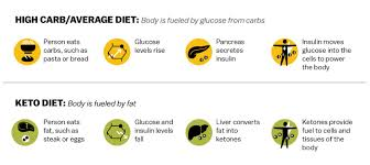 Keto Diet Percentage Chart Keto Diet Weight Loss And Disease Treatment Vox
