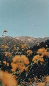 Download Aesthetic Landscape Wallpaper ...