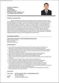 Curriculum Vitae Chemical Engineer Infoe Link