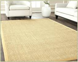 ikea lohals rug 6x9 jute area rugs with regard to wonderful rug reviews birch lane remodel