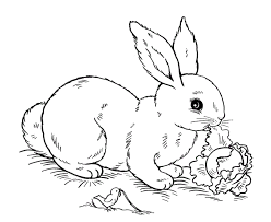 Small Picture Easter Bunny Coloring Pages Make A Photo Gallery Free Easter Bunny