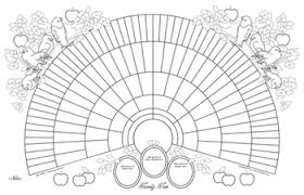 11x17 Printable Genealogy Fan Chart Coloring Page Bird Design
