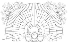 Genealogy Fan Chart 11x17 Printable Genealogy Fan Chart Coloring Page Bird Design