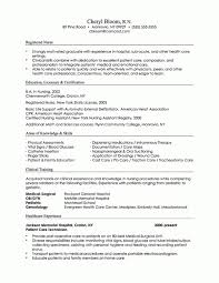 Combination Resume Template 2017 3 Format Combined Vasgroup Co