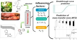 Computational simulations of the mass transfer zone in GS adsorption column  packed with Fe3+ type ion exchanger - ScienceDirect
