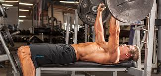 Get On Board For A Bigger Bench  Muscle U0026 FitnessBench Press Chains For Sale
