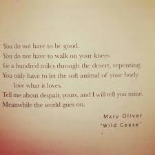 Wild Geese Mary Oliver Google Search Inspiration For A Custom Mary Oliver Love Quotes