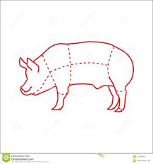 Pig Butcher Chart Art Pig Meat Chart Vector For Butchers Stock Vector