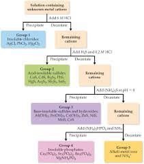 Chemistry Qualitative Analysis Flow Chart Qualitative Analysis A Flowchart Showing Clutch Prep