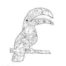 Free Realistic Bird Coloring Pages Realistic Bird Coloring Pages