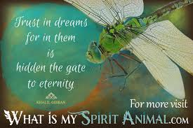 Dragonfly Quotes Sayings Animal Quotes Sayings