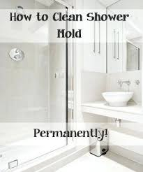 best for cleaning glass shower doors top ways to clean your shower mold best s