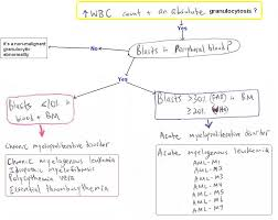 Hematology Flow Chart Hematology Wordsology
