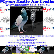 Pigeon Radio Audio Archives