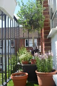 Small Picture Long Narrow Garden Design Online Best Garden Reference