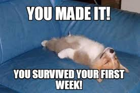 Meme Maker - you-made-it-you-survived-your-first-week