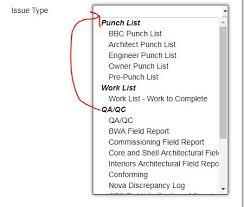 Users Labeling Every New Issue As Punch List - Autodesk Community