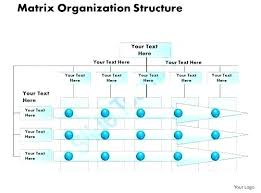 Organizational Structure Ppt Template Medsaidi Me
