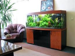 aquarium office. Extraordinary Home Aquarium Ideas For Your Decorations Fish Tank Design  Unique Office Hire . Desk