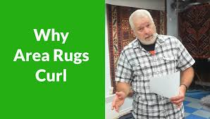 why area rugs curl area rug cleaning victoria bc