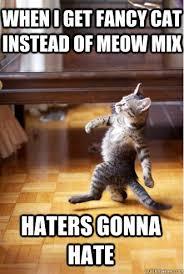 Pimp Strut Cat memes | quickmeme via Relatably.com