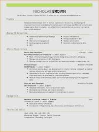 Cover Letter For Promotion Unique It Resume Writing Services Elegant